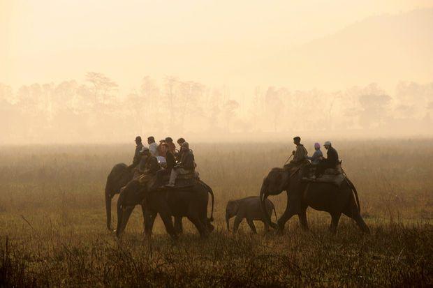 L'Assam