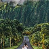 Oahu, Hawaii: 5 Must Have Experiences | We Are Travel Girls  Jurassic Park or Lost? What do you think of first when you see this spot?⠀ ✧✧✧✧✧⠀ Photo by Katrina @katrinathi⠀ ✧✧✧✧✧⠀ Traveller Tip From Katrina ↠ Ho'omaluhia Botanical Garden is a 400 acre rainforest garden filled with plants species from all over the world. The Garden also emphasizes on conservation and preservation of Hawaii and the Polynesian Islands. Permits are available to c... #Experiences #Girls #Hawaii #Oahu #travel