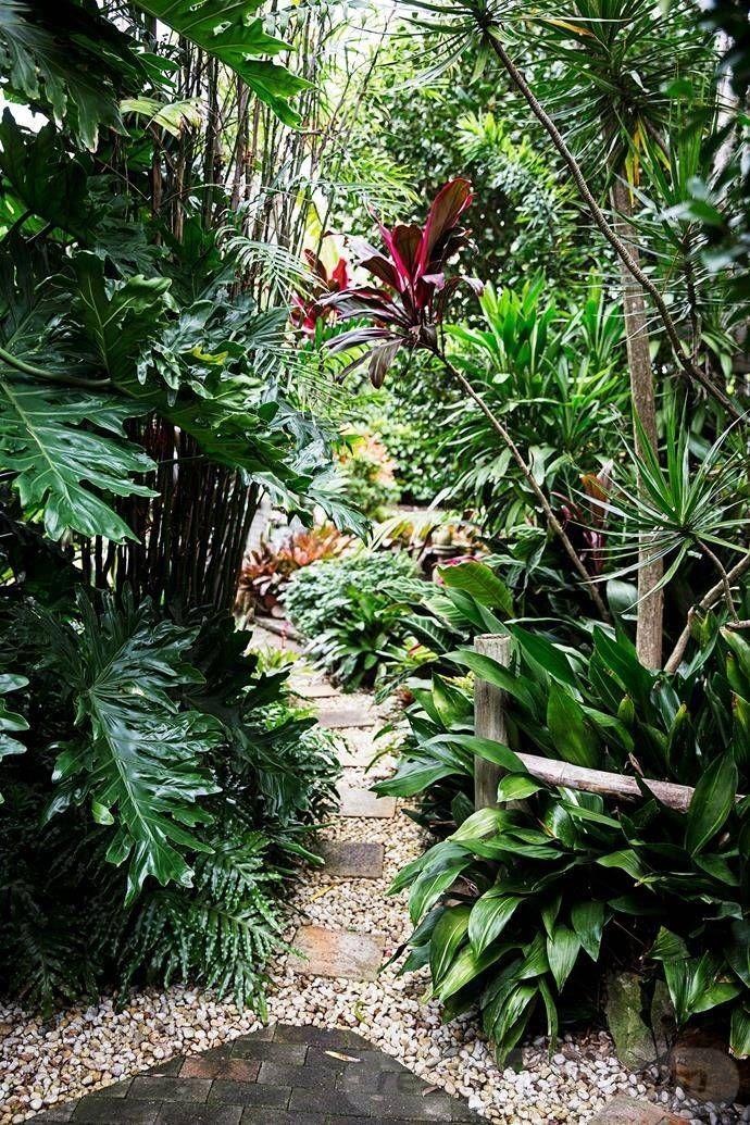 20 Exquisite Tropical Garden Ideas Queensland - 20 ...
