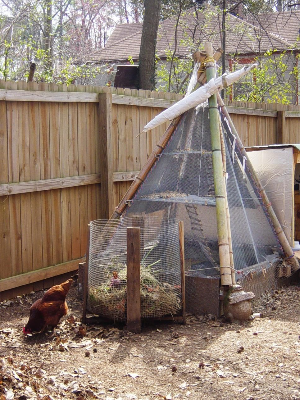 chicken coops for backyard flocks coops backyard and urban setting