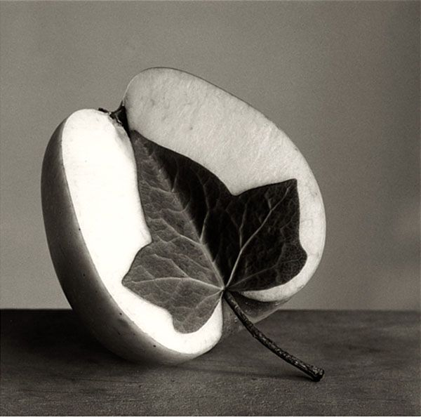 Photograph By: Chema Madoz http://www.visualnews.com/2013 ...
