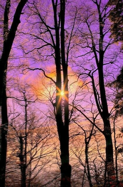 Perfect timing, beautiful nature