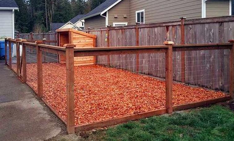 Picture | Dog house diy, Dog backyard, Dog kennel outdoor