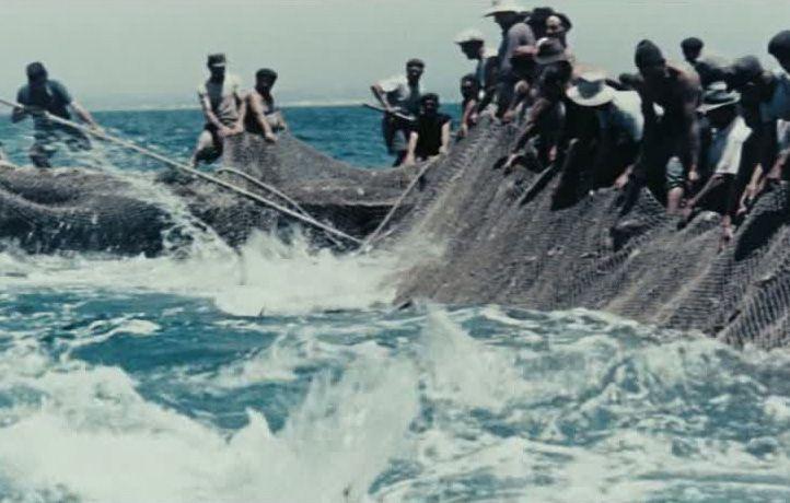 """Fischer im Dokumentarfilm """"Contadini del mare"""" (Bauern des Meeres) I 1956, Vittorio De Seta"""