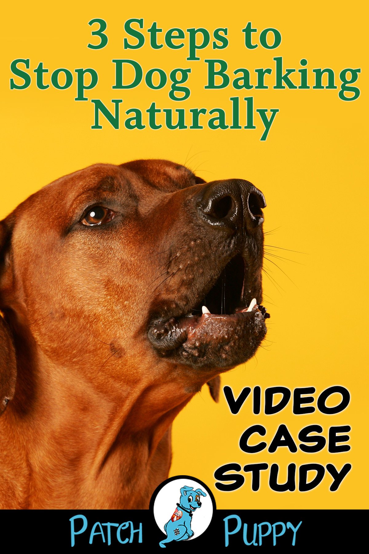 3 Steps To Stop Dog Barking Naturally Video Case Study Patchpuppy Com Stop Dog Barking Dog Barking Bark Collar Reviews
