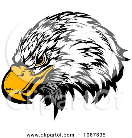 Black And White Cartoon Feather Clipart Grinning Bald Eagle Mascot Head Royalty Free Vector Eagle Mascot Eagle Cartoon Free Vector Illustration