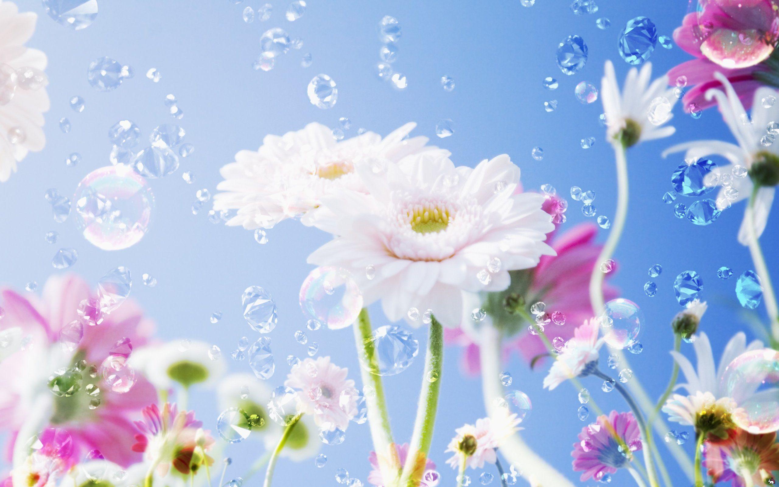 Flowers 2560 1600 Beautiful Flowers Hd Wallpapers Flower Images Wallpapers Flower Wallpaper