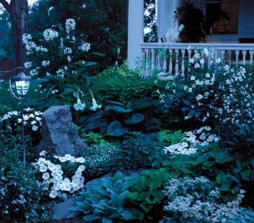 A Guide to Gardens That Look Best After Dark | RealSimple.com