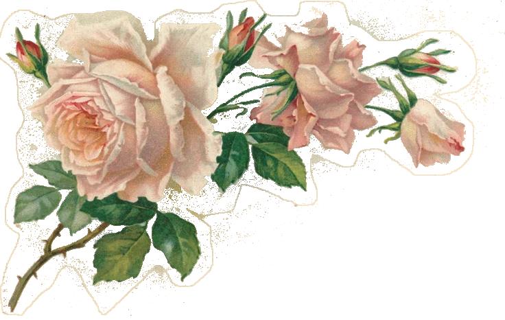 они фейсбуке, картинки для декупажа винтажные розы белом