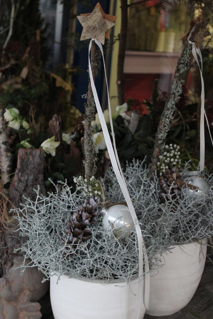 Schlichte Weihnachtsdeko Idee Zum Selber Machen Aus Einer Pflanze