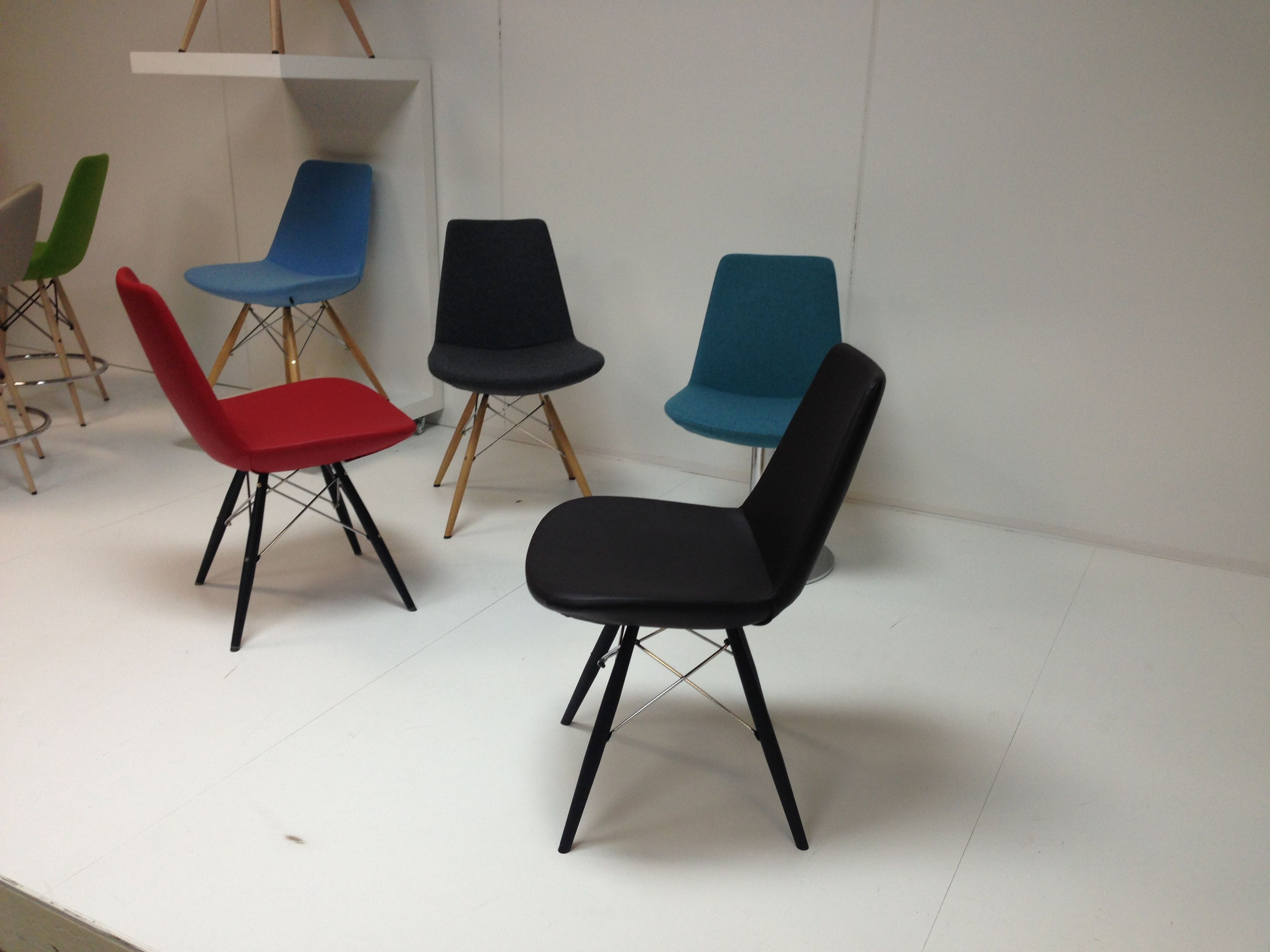 Modern Dining Room Chairs On Display In Multiple Frames And Seat Colors Available At