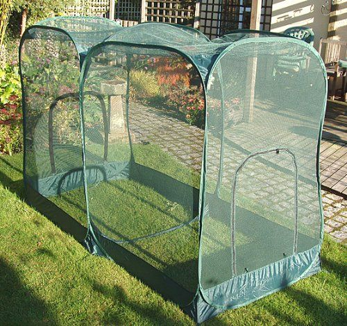 Pop Up Giant Fruit Cage Veg Growing Cage Medium With Images