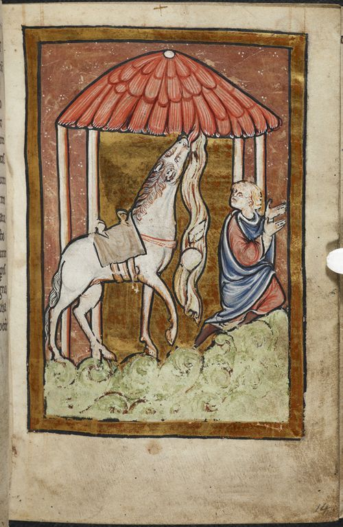 via @BLMedieval St Cuthbert miracle with horse