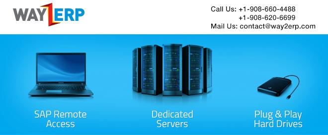 SAP Remote Access , SAP Installation , Plug & Play Hard