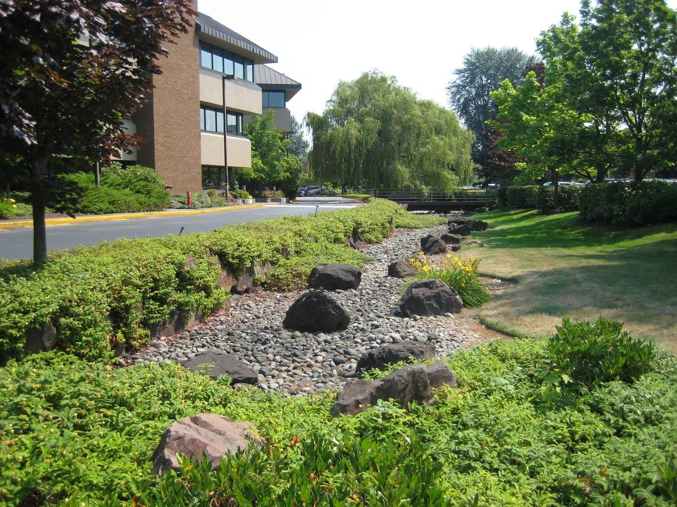 Gabion retaining wall in this swale adds beautiful textural ...