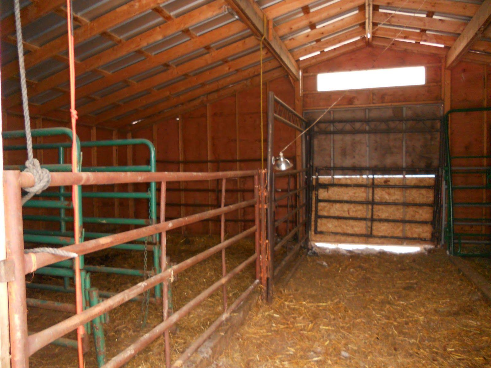 The Calving Barn Calving Barns Barn Design Farm Life