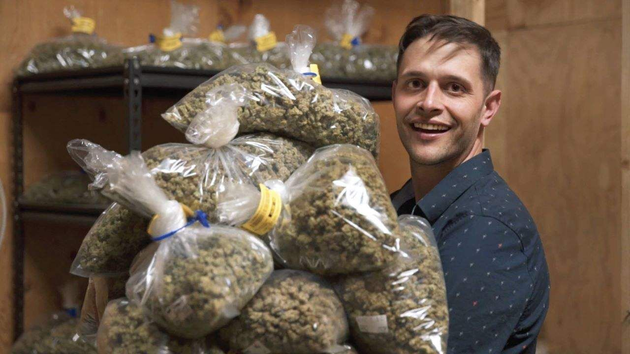 This Dude Gets Paid to Smoke Weed and Write About It