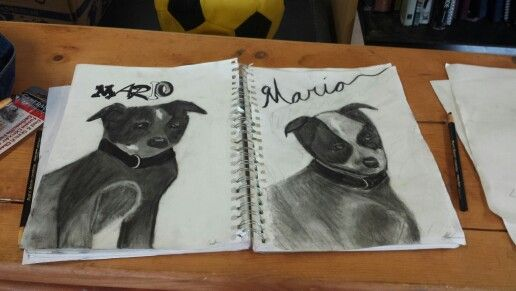 Me and my dads sketchs of my sisters dog mine is the one on the left