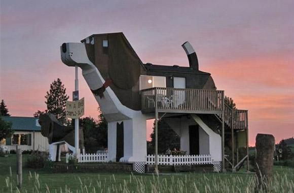 Is Being In The Dog House Really Such A Bad Thing Crazy Houses