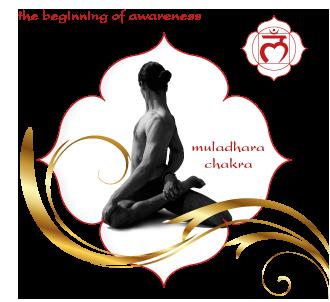 100 Hours Ashtanga Yoga Teacher Training Course in Rishikesh, India