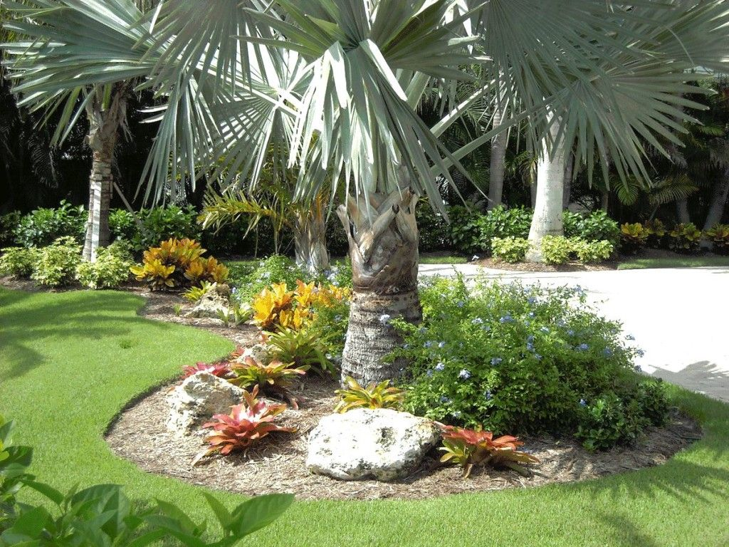 Front Yard Landscape Ideas Florida Xlandscape Area Small Yard ...