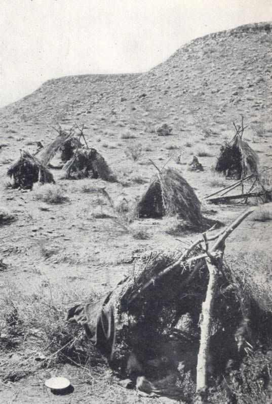 Paiute Indians Images of Their Shelter | Bannock Indian Tribe History