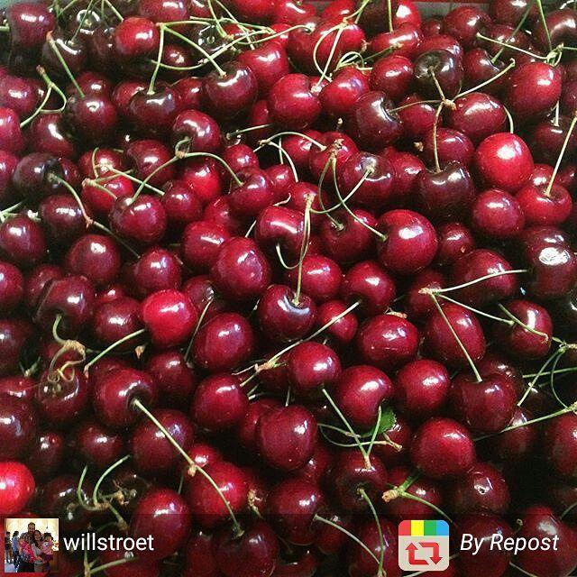 #cherries #fruit #summer #Okanagan
