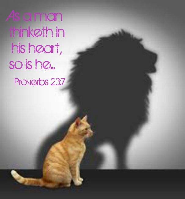 Image result for scripture as a man thinketh so is he