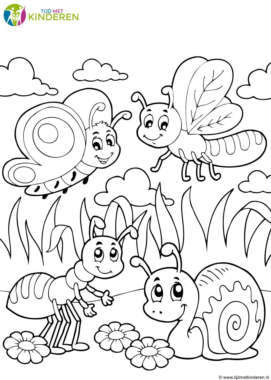 kleurplaat vlinders met mier en slak png 913 215 1279