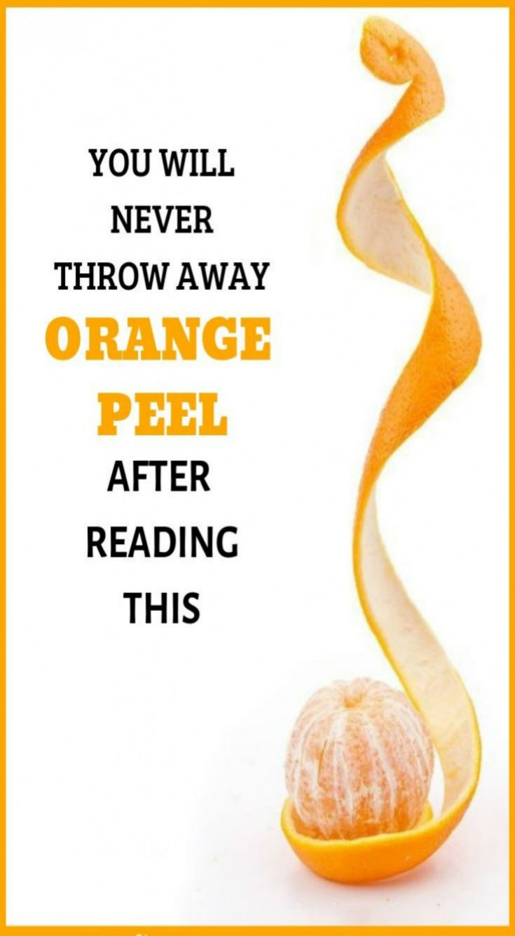 Do Not Think About Throwing The Peel Of The Orange Into The Garbage And…