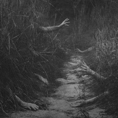 Grabbing Dark Walk Scary Halloween Fall Path Woods Zombie