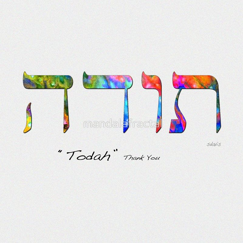 how to say thank you in jewish