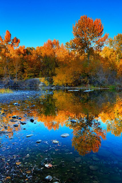 Making the most of fall | Idaho: New Home | Boise idaho
