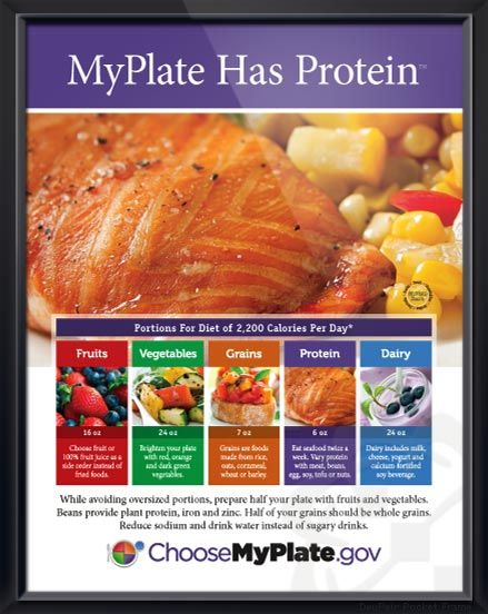 Myplate has protein exclusive poster features protein of five food myplate has protein exclusive poster features protein of five food groups with healthy tips and myplate forumfinder Gallery