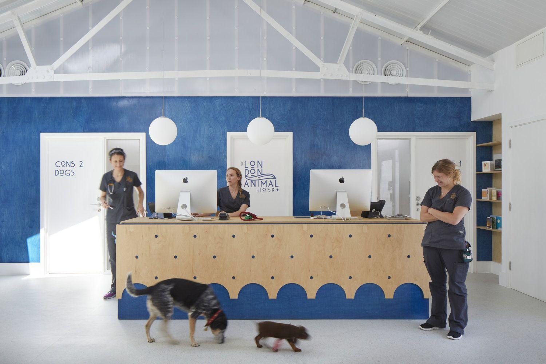London Animal Hospital By Alma Nac Animal Hospital Pet Clinic Hospital Architecture