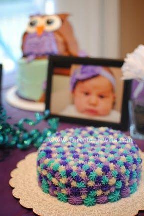 101 Adorable Smash Cake Ideas Turquoise Baby girl purple and Owl