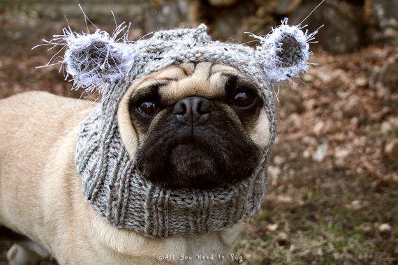 Baby Koala Dog Hat Pug Hat Pug Hats Dog Clothing Pet Etsy Dog Hat Baby Koala Pet Costumes