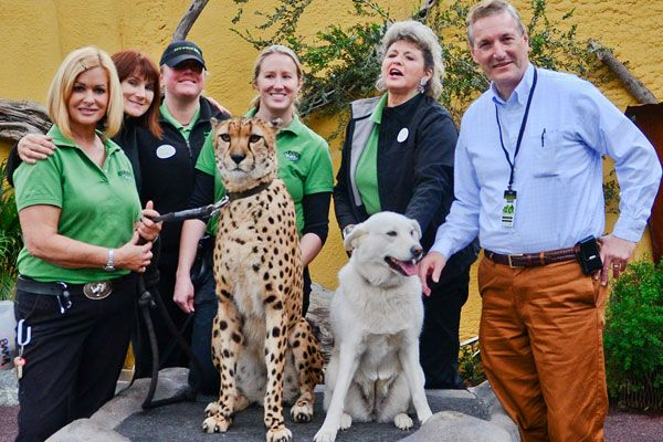 Rescue Dog Bonds With Cheetah Rescue Dogs Dog Friends Dogs