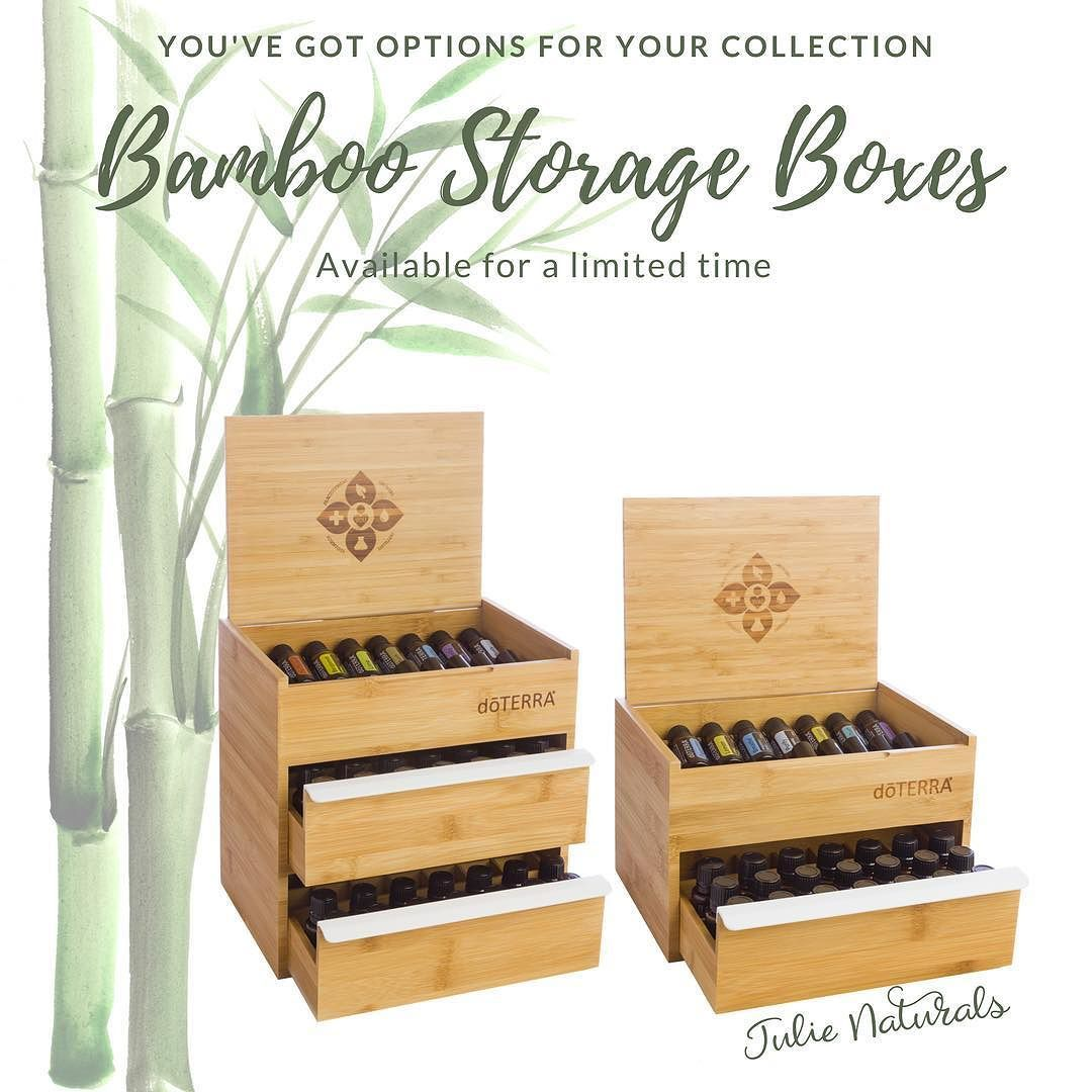 The Perfect Storage Unit For Your Doterra Essential Oil Collection
