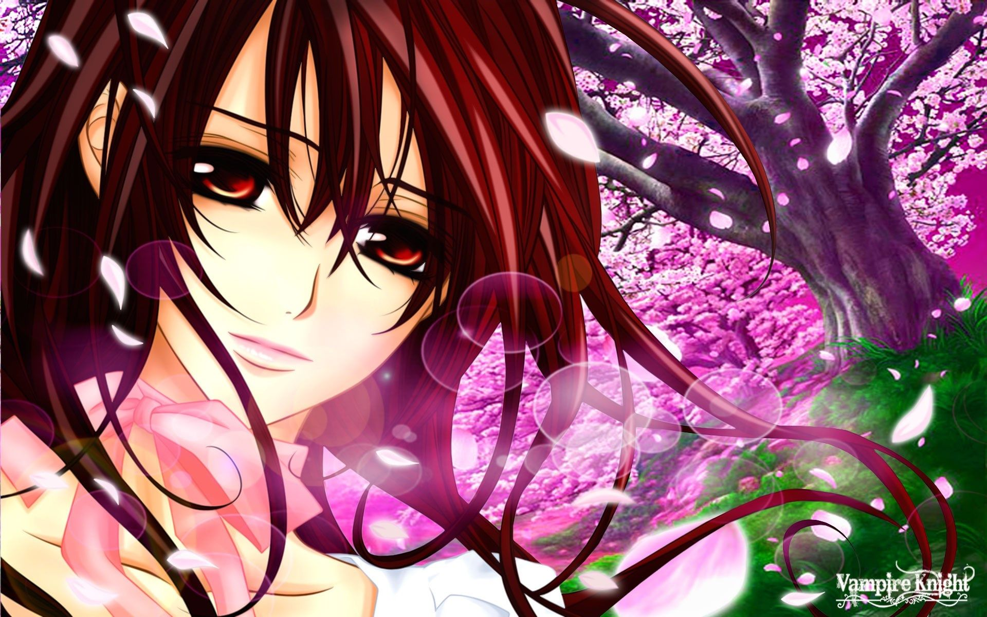vampire knight background wallpaper free, 1920x1200 (459 kb