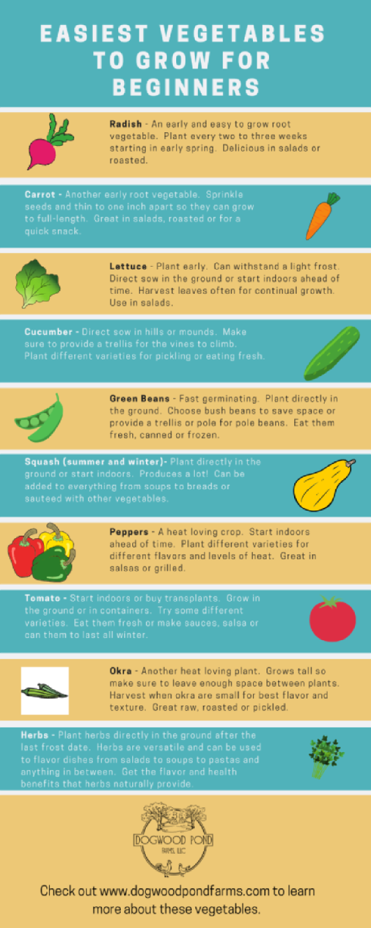 Easy to Grow Vegetables – Easy vegetables to grow