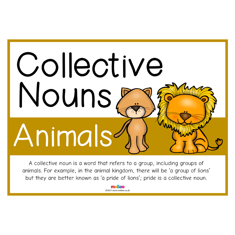 Collective Nouns Animals Collective nouns, Nouns