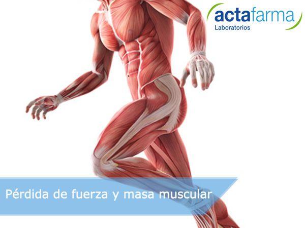 a que se debe la perdida de masa muscular