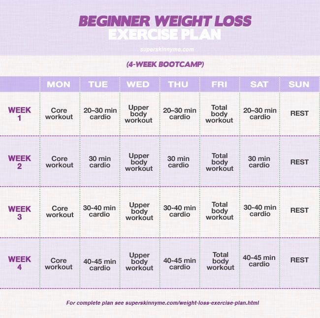 Beginner weight loss diet plan