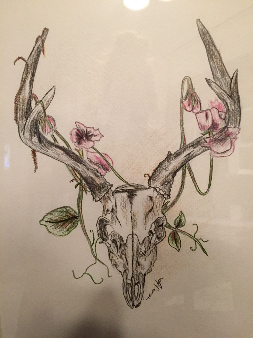 deer skull drawing my homemade projects pinterest skull drawings deer and skulls. Black Bedroom Furniture Sets. Home Design Ideas
