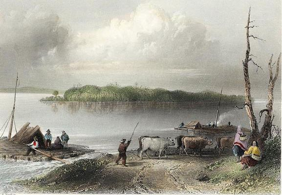 Engraving of an 1842 print by William Henry Bartlett showing Navy Island from the Canadian side. This island was the first Canadian territory occupied by the combined American and Canadian raiders.