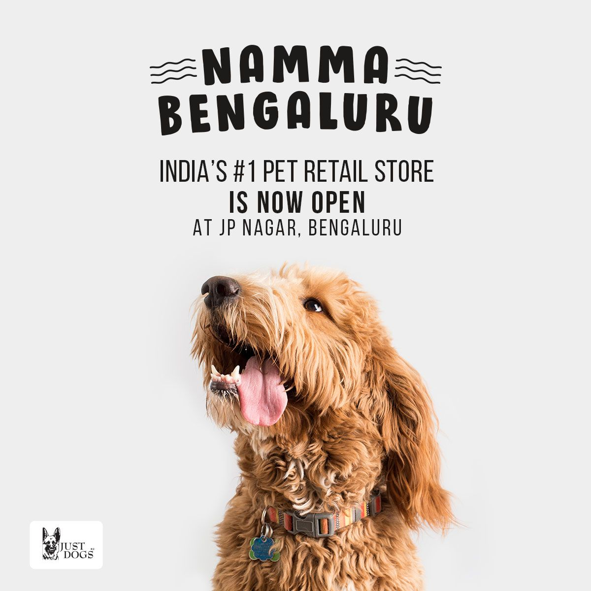 Just Dogs Jp Nagar Bengaluru Is Now Open Visit Today And Shop For Your Fur Buddies Justdogs 1petretailstore Happiestplace Pet Groomers Cat Groomer Pets