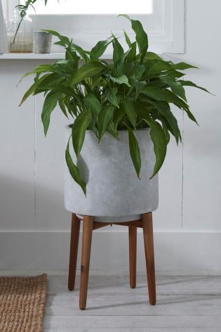 Tall Concrete Planter With Wooden Legs Tall Planters Planters Concrete Planters