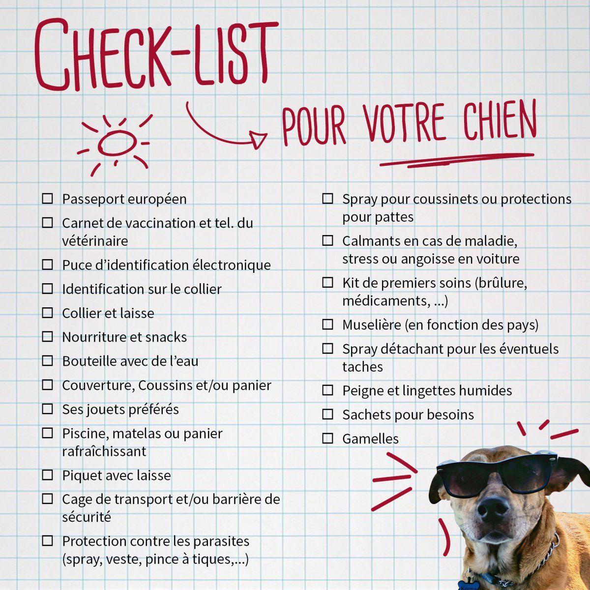 Vacances D Ete Une Check List Pour Votre Chien Horta Vakantie Checklist