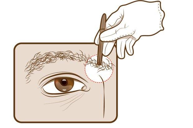 Aprenda a cuidar das sobrancelhas